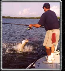 Fighting a tarpon at boatside.